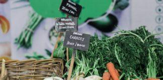 Organic Newspaper_CINHOE 2020 Organic Expo