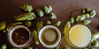 Organic Newspaper_Organic California Blonde Ale Featured Image