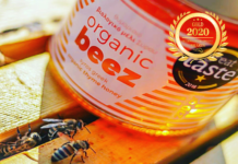 Organic Beez at Organic Newspaper